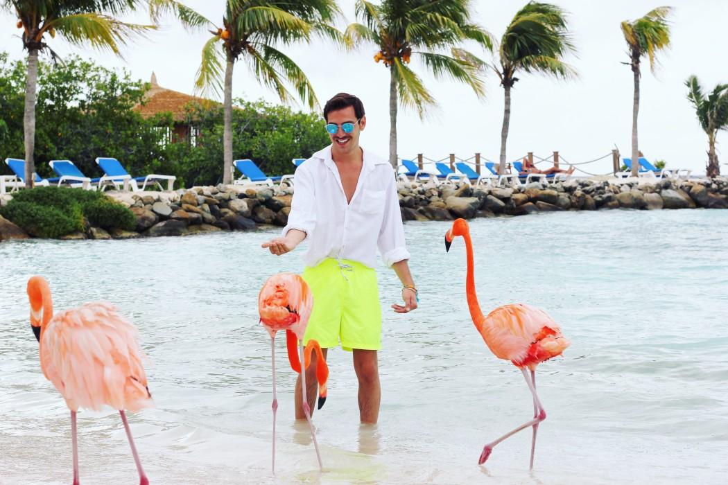 Dove trascorrere il Capodanno al mare? Ad Aruba!